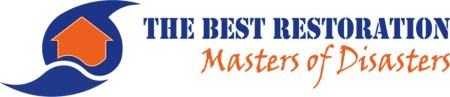 The Best Restoration: Masters of Disasters